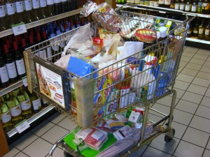 "My ""Grocery"" Shopping Cart!"